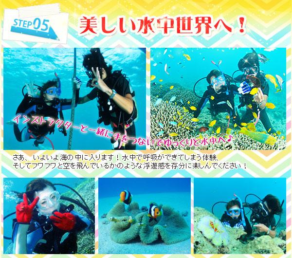 美しい水中世界へ!