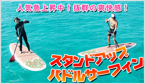 スタンドアップパドルサーフィン
